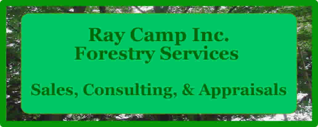 Ray Camp Inc., Forestry Services